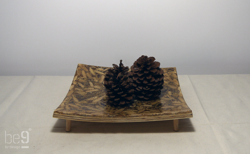 Plateau with Pinecones frontal